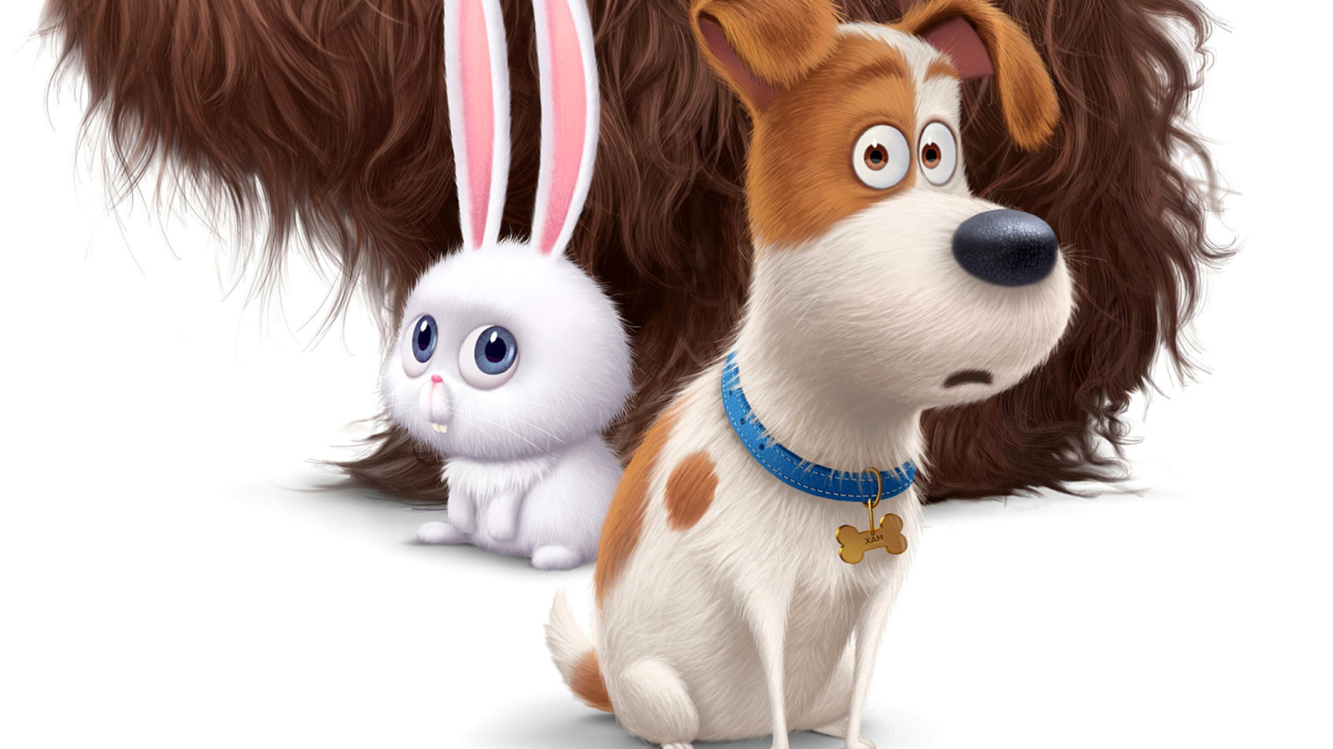 The Secret Life Of Pets Movie 2016 Wallpaper For 1920x1080