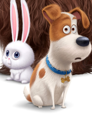 The Secret Life of Pets Movie 2016 Wallpaper for Nokia C2-06
