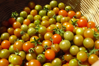 Tomatoes Background for 960x854