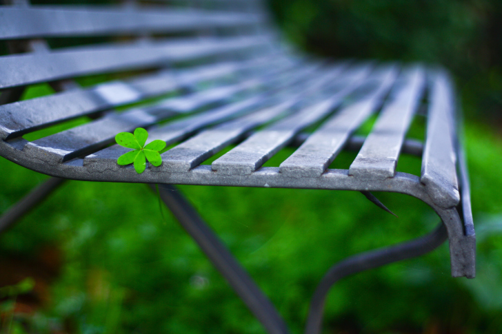 Screenshot №1 pro téma Little Green Leaf On Bench