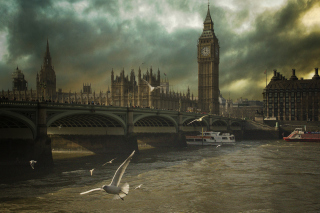 Dramatic Big Ben And Seagulls In London England Picture for Android, iPhone and iPad