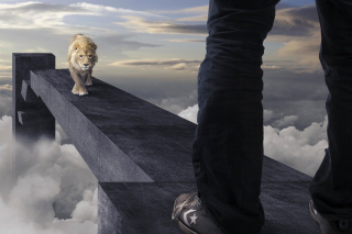 Advertisement with Lion Picture for Desktop 1280x720 HDTV