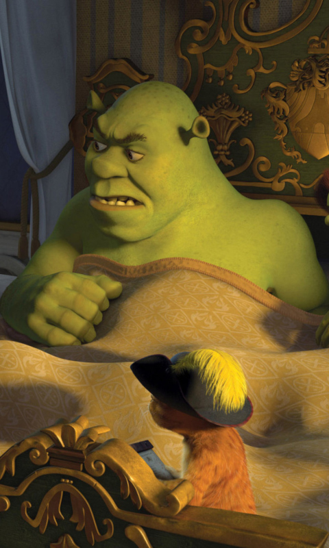 Sfondi Cartoons Shrek 3 480x800