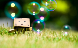 Danbo Wallpaper for Android, iPhone and iPad