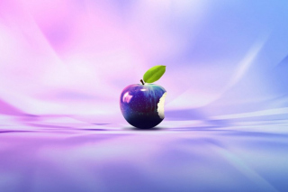 Tenderness Apple Picture for Android, iPhone and iPad