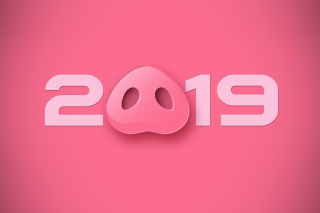 Prosperous New Year 2019 Wallpaper for Android 480x800