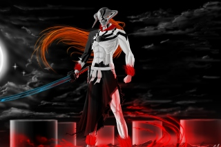 Ichigo Vasto Lorde Bleach Picture for Android, iPhone and iPad