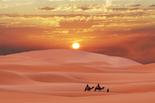 Sahara Desert Wallpaper for Android, iPhone and iPad
