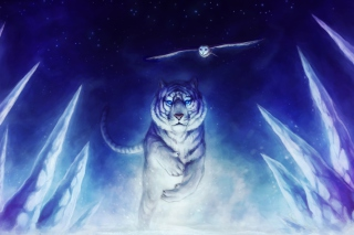 Free Tiger & Owl Art Picture for Android, iPhone and iPad