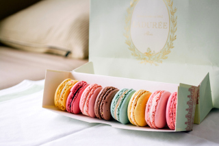 Free Macaron Allsorts Picture for Android, iPhone and iPad