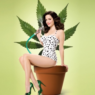 Weeds sfondi gratuiti per iPad mini