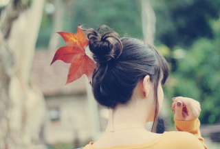 Autumn Hair Style Background for Android, iPhone and iPad