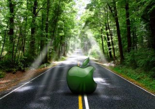 Green Apple Picture for Android, iPhone and iPad