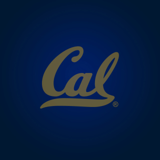 California Golden Bears Picture for iPad mini