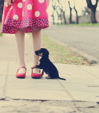 Free Girl In Polka Dot Dress And Her Puppy Picture for Nokia Asha 311