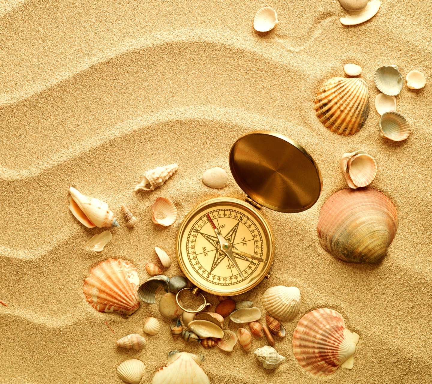 Screenshot №1 pro téma Compass And Shells On Sand 1440x1280