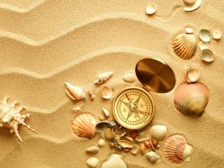 Screenshot №1 pro téma Compass And Shells On Sand 320x240