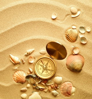Kostenloses Compass And Shells On Sand Wallpaper für 1024x1024