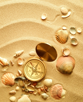 Compass And Shells On Sand Picture for Nokia C1-00