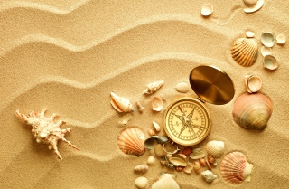 Compass And Shells On Sand Background for Android, iPhone and iPad