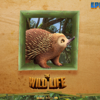 The Wild Life Cartoon Epi - Fondos de pantalla gratis para iPad 2