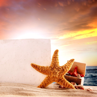 Kostenloses Seashell and Starfish Coastal Decor Wallpaper für 1024x1024