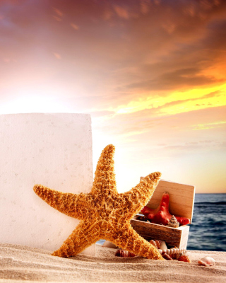 Seashell and Starfish Coastal Decor Background for Nokia C1-00