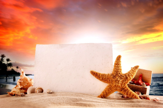 Seashell and Starfish Coastal Decor Background for HTC Desire 310