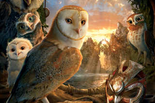 Legend Of The Guardians The Owls Of Ga Hoole - Obrázkek zdarma