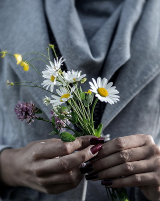 Pretty Little Field Bouquet In Hands - Obrázkek zdarma pro iPhone 5C