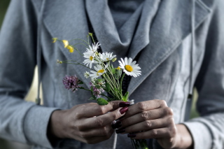 Kostenloses Pretty Little Field Bouquet In Hands Wallpaper für Android, iPhone und iPad