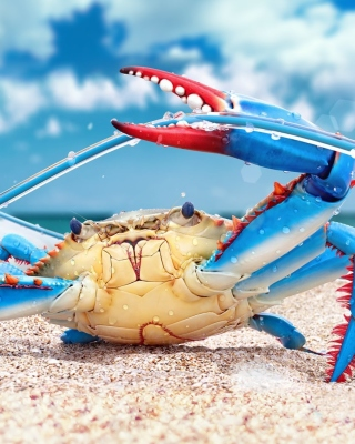 Free Blue crab Picture for Nokia C1-01