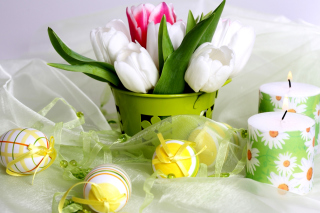 Easter Still Life Picture for Android, iPhone and iPad