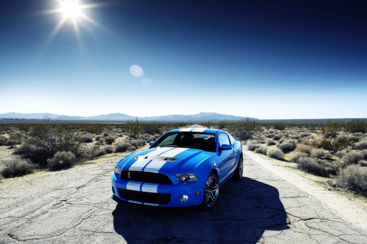 Screenshot №1 pro téma Ford Shelby Gt500