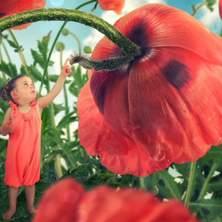 Little kid on poppy flower Wallpaper for iPad 3