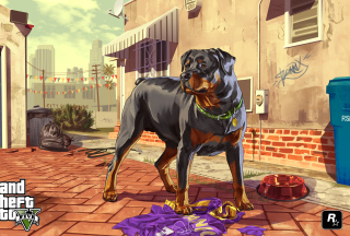 Grand Theft Auto V Dog Background for Android, iPhone and iPad