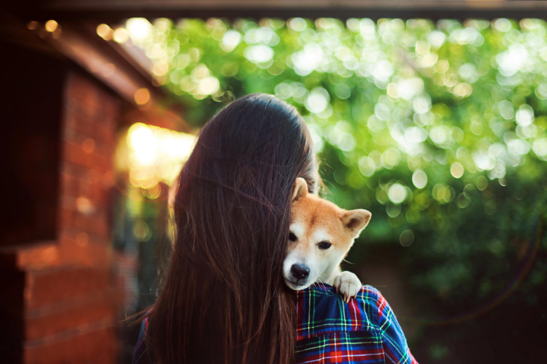 фото на аву красивые картинки животных используются наружной облицовке