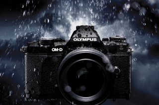 Olympus Om D Picture for Android, iPhone and iPad