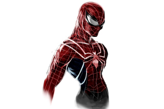 Kostenloses Spiderman Poster Wallpaper für Samsung I9080 Galaxy Grand
