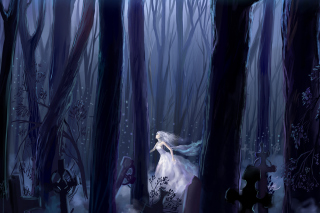 White Princess In Dark Forest Picture for Android, iPhone and iPad