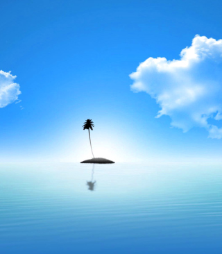 Lonely Palm Tree Island Wallpaper for Nokia Asha 311