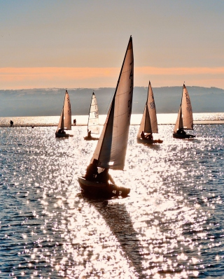 Free Sailing Boats Picture for HTC Titan