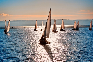 Sailing Boats Picture for Android, iPhone and iPad