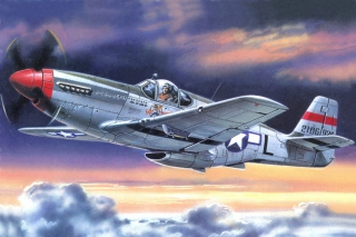 North American P 51 Mustang Picture for Android, iPhone and iPad