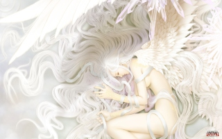 Fantasy Angel Picture for Android, iPhone and iPad