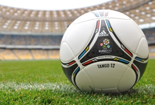 Uefa Euro 2012 Poland Ukrain Tango Ball Picture for Android, iPhone and iPad