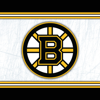 Boston Bruins NHL Picture for iPad 3