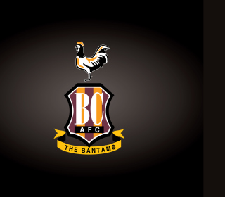 Free Bradford City A.F.C. Picture for iPad mini 2