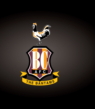Free Bradford City A.F.C. Picture for Nokia C2-02
