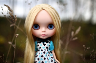 Free Blonde China Doll With Blue Eyes Picture for Android, iPhone and iPad